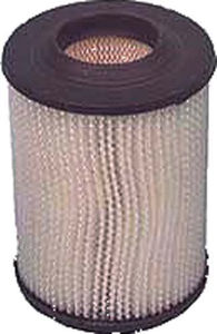 Picture of AIR FILTER  2101