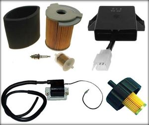 Picture for category Tune Up Kits, Filters, Spark Plugs, Ignition Parts