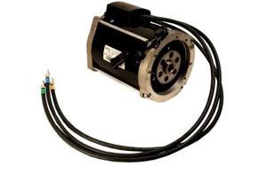 Picture of 8331 Motor, RXV AC EZGO 48v